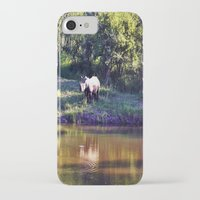 rhino iPhone & iPod Cases featuring Rhino  by Art-Motiva