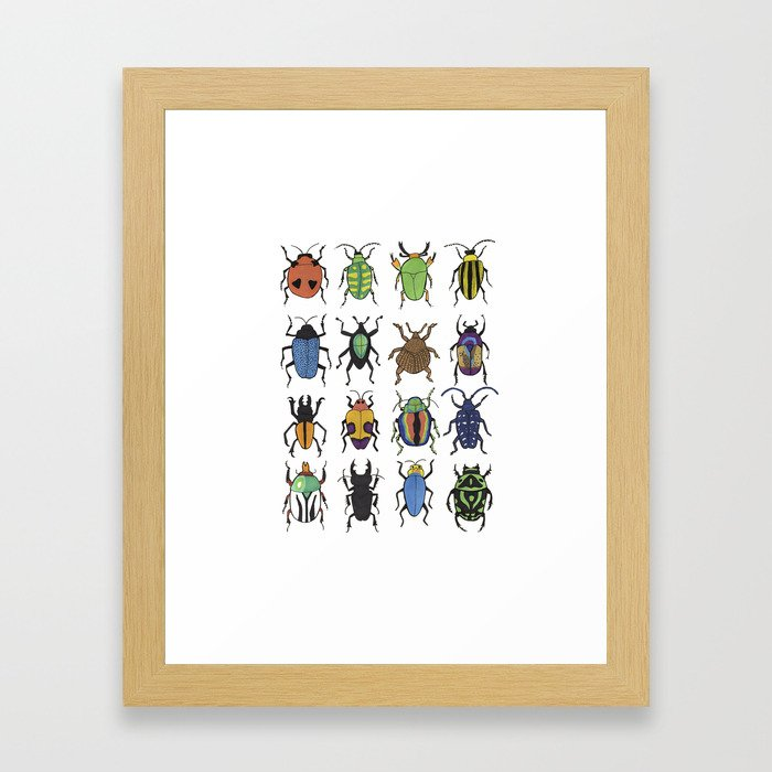 Beetle Species Framed Art Print