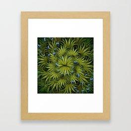 """El Bosco fantasy, tropical island blue butterflies"" Framed Art Print"