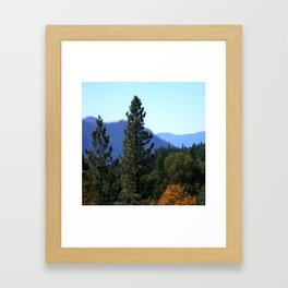 Changing of colors.... Framed Art Print