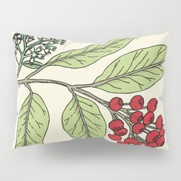 Plant Illustration Print Lilly Pilly Pillow Sham