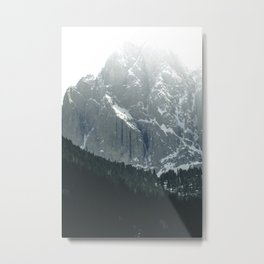 Scenic Mountains and Forest Metal Print