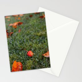 Autumn crab apple Stationery Cards