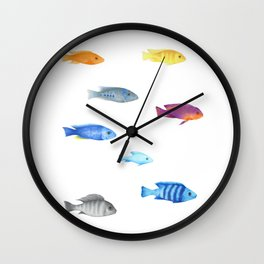 cichlids fish malawi lake Wall Clock