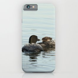 Dad feeds baby loon chick iPhone Case
