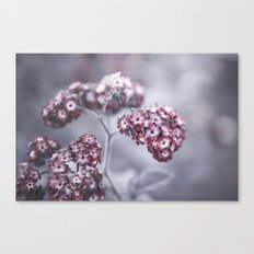 selfless, cold and composed Canvas Print