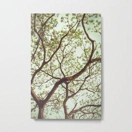 Arboreal nº 5 Metal Print