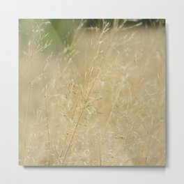 Grass in the Field Metal Print