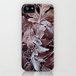 Frost 3 iPhone Case