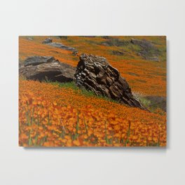 Poppy Rock Metal Print