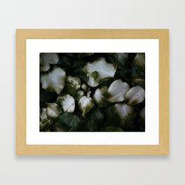 Burnt Ivy Framed Art Print
