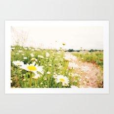 field of dreams Art Print