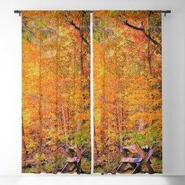 Autumn Magic Blackout Curtain