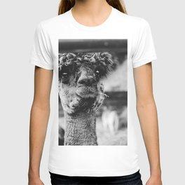 Dog by Karly Jones T-shirt