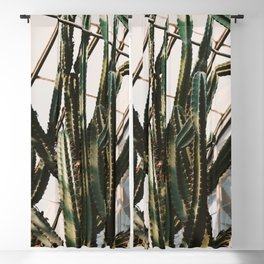 Greenhouse Cactus Blackout Curtain