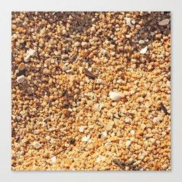 Sand Texture Canvas Print