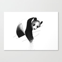 Panda Bear Canvas Print