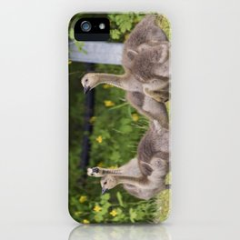 Canadian Goslings iPhone Case