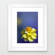 Yellow solitaire 2 038 Framed Art Print