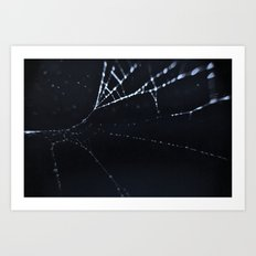 Dark Cold Cob Art Print