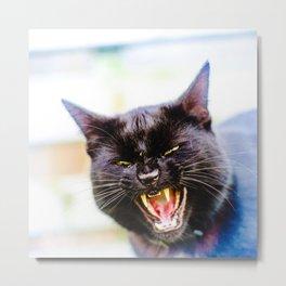 Angry black cat Metal Print