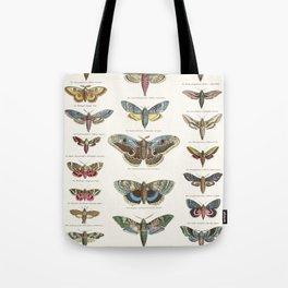 Vintage Moth Chart Tote Bag