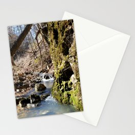 Alone in Secret Hollow with the Caves, Cascades, and Critters, No. 6 of 21 Stationery Cards