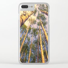 Aspen Trees Against Sky Clear iPhone Case