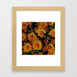 Sunshiny Mums Framed Art Print
