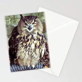 Happy Owl. Stationery Cards