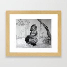 Zen gorilla  Framed Art Print