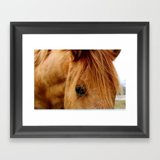 """a horse of a different color"" Framed Art Print"