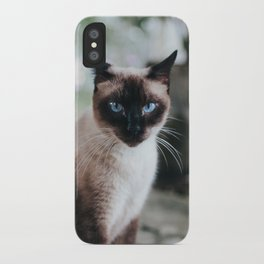 Blue-eyed Cat iPhone Case