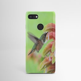 Hummingbird in Justicia Android Case