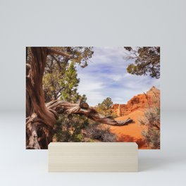 Unique desert beauty at Kodachrome Park in Utah Mini Art Print