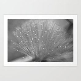 Light My World Art Print