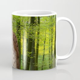 Little hawk -  wildlife photography Coffee Mug