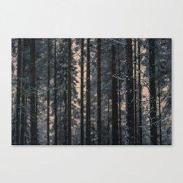 Consenescere Canvas Print