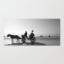 The horse drawn carriage Canvas Print