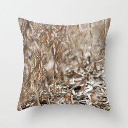 Harvest Season Throw Pillow