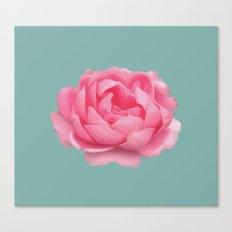 Rose on mint Canvas Print
