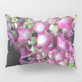 Pink Raindrops Pillow Sham