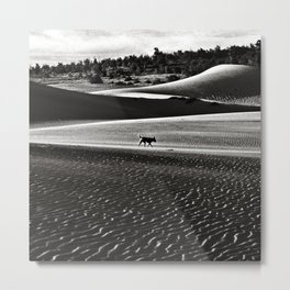 Walking alone through the desert of life Metal Print