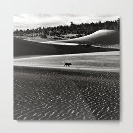 Walking alone through the desert of life Metal Print