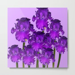 Contemporary Purple Iris Garden Art Metal Print