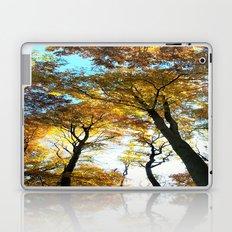 Glowing Treetop Laptop & iPad Skin