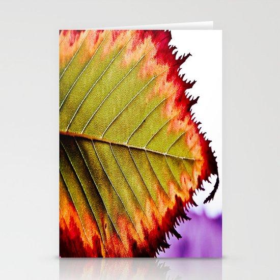 Fall Splendor Stationery Cards