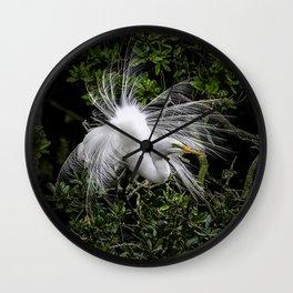Great Egret displaying Wall Clock