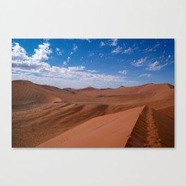 namib Canvas Print