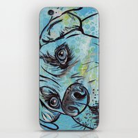 pit bull iPhone & iPod Skins featuring Blue Pit Bull Dog by WOOF Factory